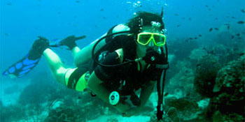Take the PADI Open Water Diver Course